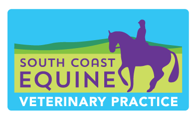 South Coast Equine Veterinary Practice